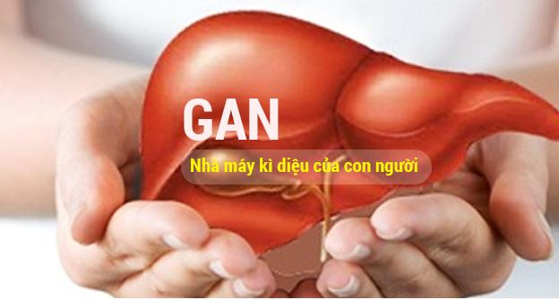 Đặc trị bệnh Gan