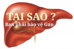 Tại sao bạn phải bảo vệ gan