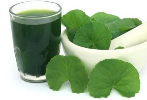 Nước cốt rau má rất tốt để giải độc gan