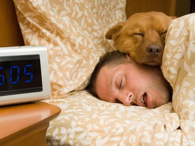 Cú đêm khiến bạn mệt mỏi vào buổi sáng