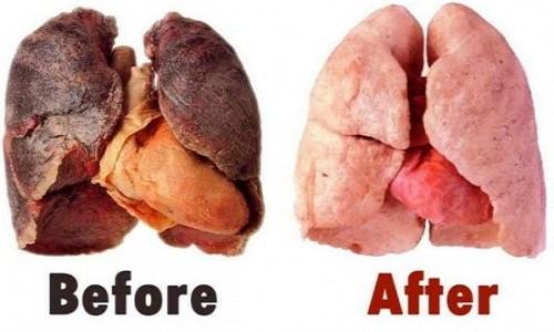 thực-phẩm-làm-sạch-phổi
