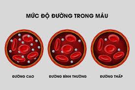 Mức độ đường trong máu
