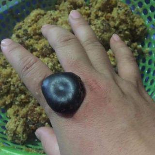 Hạt đậu lào hút độc