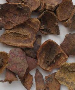 Vị thuốc thạch lựu