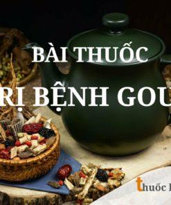 Bài thuốc trị bệnh Gout