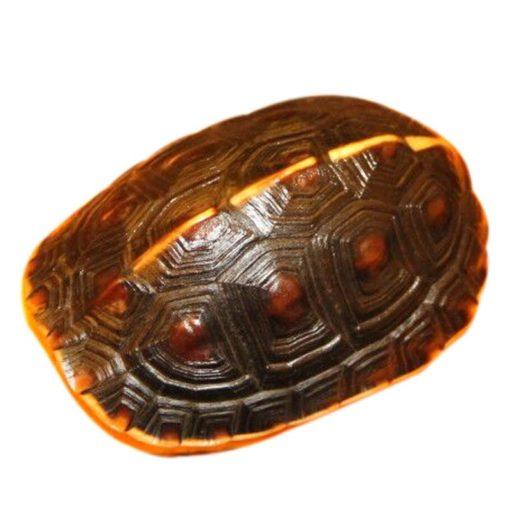 Mai rùa khô