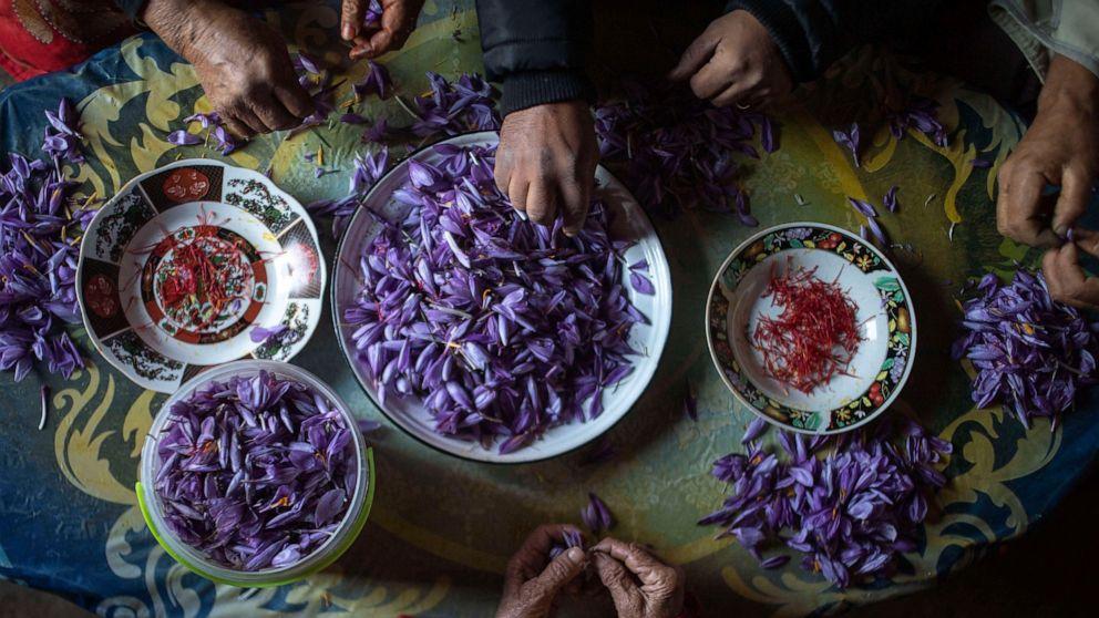 Vườn hoa nghệ tây
